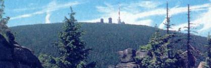 Der erfahrene Wanderführer im Nationalpark Harz